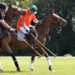 Development tournament at Ballindenisk